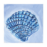 Shell I Prints by Anne Seay