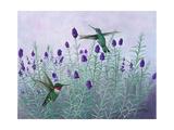 Humming Lavender Prints by Julie Peterson
