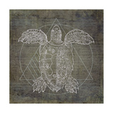 Turtle Geometric Silver Prints by Ramona Murdock