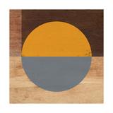 Mod Orange and Grey Prints by Linda Woods
