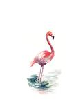 Pink Flamingo II Poster av Sophia Rodionov