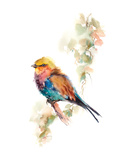 Pretty Bird III Kunst av Sophia Rodionov