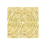 Tree Ring Triptych III Print by Ramona Murdock