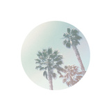 Faded Palms Prints by Linda Woods
