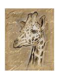Safari Giraffe Prints by Chad Barrett