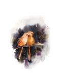 Doe Eyed Birds Poster av Sophia Rodionov