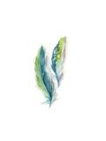 Majestic Feathers II Posters av Sophia Rodionov