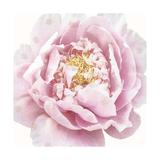 Whisper Floral Prints by Bella Dos Santos