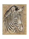 Safari Zebra Print by Chad Barrett
