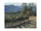 Vineyard On The Hill Premium Giclee Print by Jill Schultz McGannon