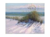 Ocean Breeze View Premium Giclee Print by Jill Schultz McGannon