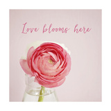 Love Blooms Here Prints by Susannah Tucker