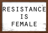 Resistance Is Female Poster