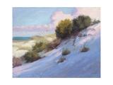 Beach Premium Giclee Print by Jill Schultz McGannon