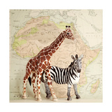 On Safari Prints by Susannah Tucker