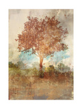 Sun Dappled Tree Print by Ken Roko