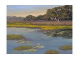 Waterlily Bay Premium Giclee Print by Jill Schultz McGannon