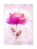 Bursting Floral Posters by Ken Roko