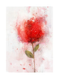 Exuberant Floral Prints by Ken Roko