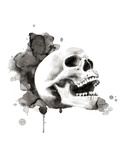 Skull III Prints by Philippe Debongnie
