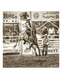 Rodeo Posters by Barry Hart