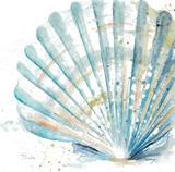 Water Shell Kunstdrucke von Patricia Pinto