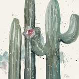 Natural Desert Cactus Prints by Patricia Pinto