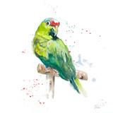 Amazon Parrot II Poster von Patricia Pinto