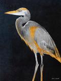 Elegant Heron I Posters by Lanie Loreth