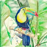 Colorful Toucan Kunstdruck von Patricia Pinto
