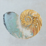 Teal Gold Seashell II Posters by Patricia Pinto