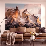Torres del Paine Wallpaper Mural