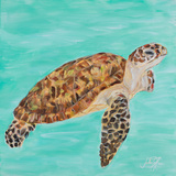 Sea Turtle I Posters by Julie DeRice