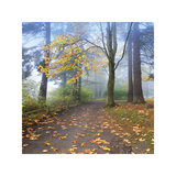 Autumn Walk Giclee Print by Jim Nilsen
