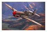 "Curtiss P-40E-1-CU ""Kittyhawk"" Poster"