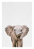 Baby Elephant Posters