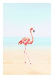 Flamingo on the Beach II Posters