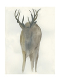 Solo Deer Affiches par Beverly Dyer