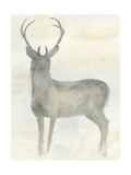 Solo Deer 2 Posters par Beverly Dyer