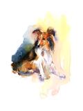 Sheltie Portrait, 2015 Giclee Print by John Keeling