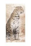 African Traveling  Animals Prints by Jace Grey
