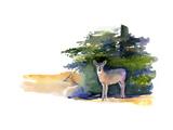 Two Deer, 2014 Giclee Print by John Keeling