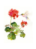 Hummingbird with Geranium, 2015 Giclee Print by John Keeling