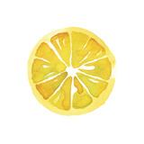 Citrus Slice Giclee Print by Kristine Hegre