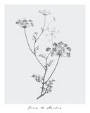 From the Meadow Impressão giclée por Maria Mendez