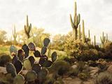 Desert Garden Giclee Print by Mark Chandon