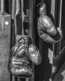 Vintage Sport - Boxing Giclee Print by Assaf Frank