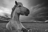 Moment in Time Photographic Print by Bragi Ingibergsson -