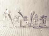 Stillness Giclee Print by Assaf Frank