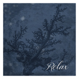 Blue Water Coral Relax Prints by Jace Grey
